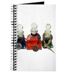 Colorful Potion Bottles with Journal