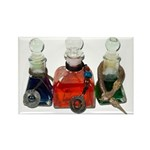 Colorful Potion Bottles with Rectangle Magnet
