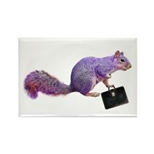 Purple Squirrel Rectangle Magnet