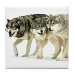 Wolf Trio Tile Coaster