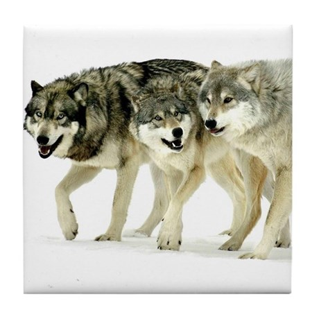 Wolf Trio Tile Coaster
