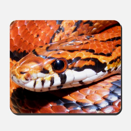 Corn Snake 3 Mousepad