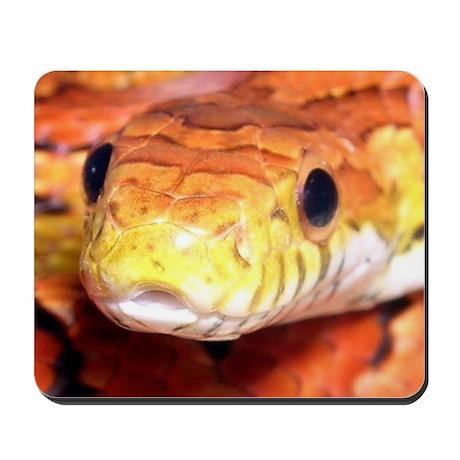 Corn Snake 2 Mousepad
