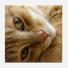 Coy Cat Art Tile