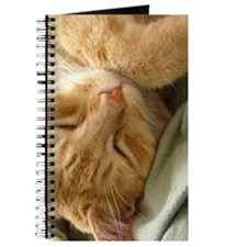 Sleeping Kitty Journal