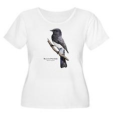 Black Phoebe T-Shirt