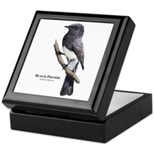 Black Phoebe Keepsake Box