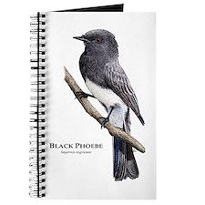 Black Phoebe Journal