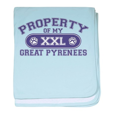 Great Pyr PROPERTY baby blanket