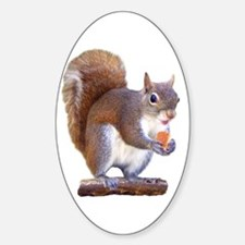 Squirrel on Log Decal