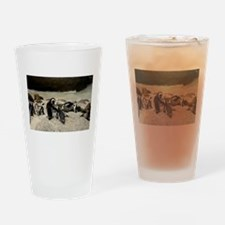 Cute South african penguins Drinking Glass
