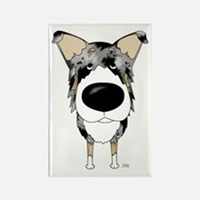 Blue Merle Collie Rectangle Magnet