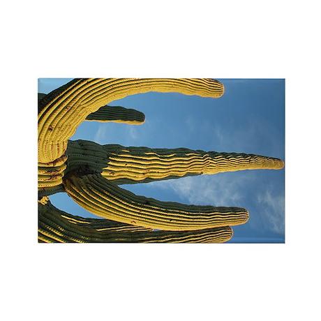 Saguaro National Park v2 Rectangle Magnet