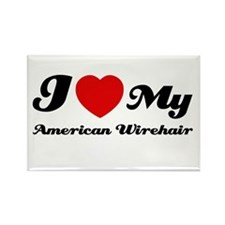I love my American wirehair Rectangle Magnet