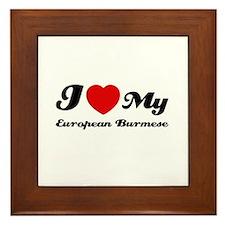 I love my European Burmese Framed Tile