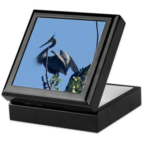 Crested Beauty Keepsake Box