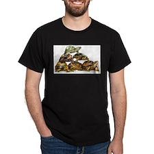Turtle Pyramid T-Shirt