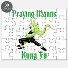 Kung Fu Praying Mantis Puzzle