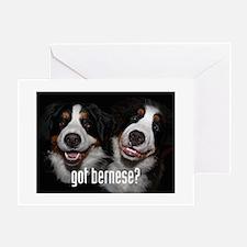 got bernese? Greeting Cards