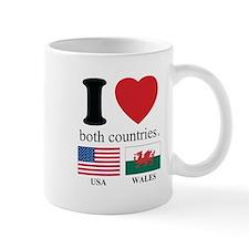 USA-WALES Mug
