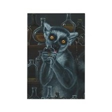 Pirate Lemur Rectangle Magnet