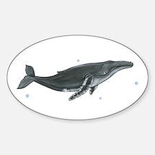 Humpback Whale Sticker (Oval)