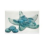 Starfish Glass Sand Dollars Rectangle Magnet (100