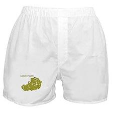 Santorum Boxer Shorts