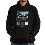 2012 Parade of Cherubs In Washington DC Hoodie (da