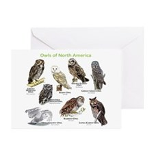 Owls of North America Greeting Cards (Pk of 10)
