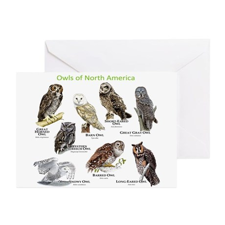 Owls of North America Greeting Cards (Pk of 20)