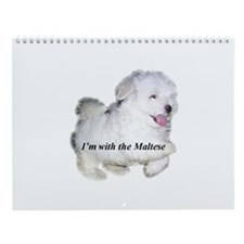 I'm with the Maltese Wall Calendar