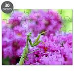 Pink and Praying Mantis Puzzle
