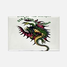 Tail Of The Dragon Rectangle Magnet