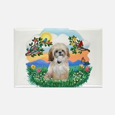 BrightLife-ShihTzu 17 Rectangle Magnet