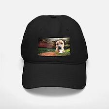 """Why God Made Dogs"" AmStaff Baseball Hat"