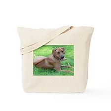 Unique Rhodesian ridgeback Tote Bag