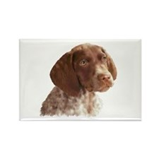 German Shorthair Puppy Rectangle Magnet