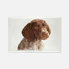 German Shorthair Puppy Rectangle Magnet
