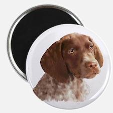 German Shorthair Puppy Magnet