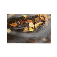 the flow of Autumn Rectangle Magnet
