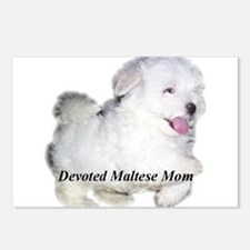 Devoted Maltese Mom Postcards (Package of 8)