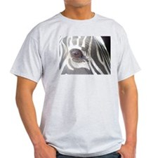 Zebra Ash Grey T-Shirt