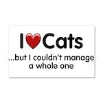 The Cat Food Car Magnet 20 x 12