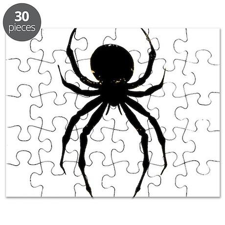The Spider Puzzle