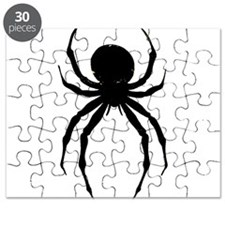 The Spider Puzzle