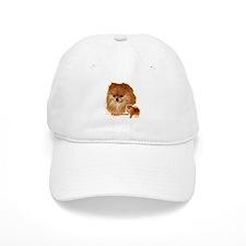 Pomeranian head and body Baseball Cap