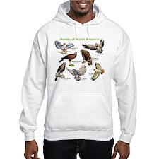 Hawks of North America Jumper Hoody