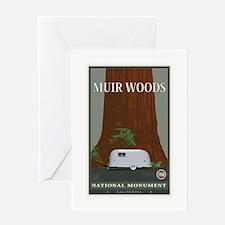 Muir Woods 1 Greeting Card