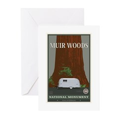 Muir Woods 1 Greeting Cards (Pk of 20)